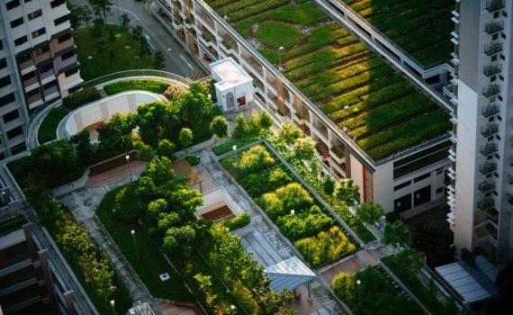 urban farming japan