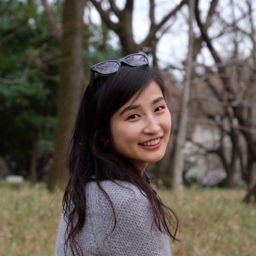noriko shindo veggino